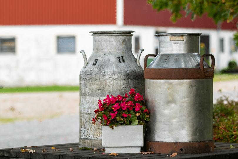 Svensk mjölkproduktion