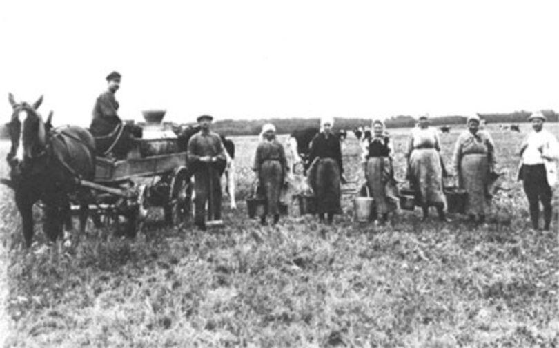 Jordbrukshistoria